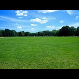 Great Lawn at Central Park New York